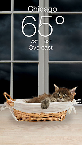 Weather Kitty Screenshot 3